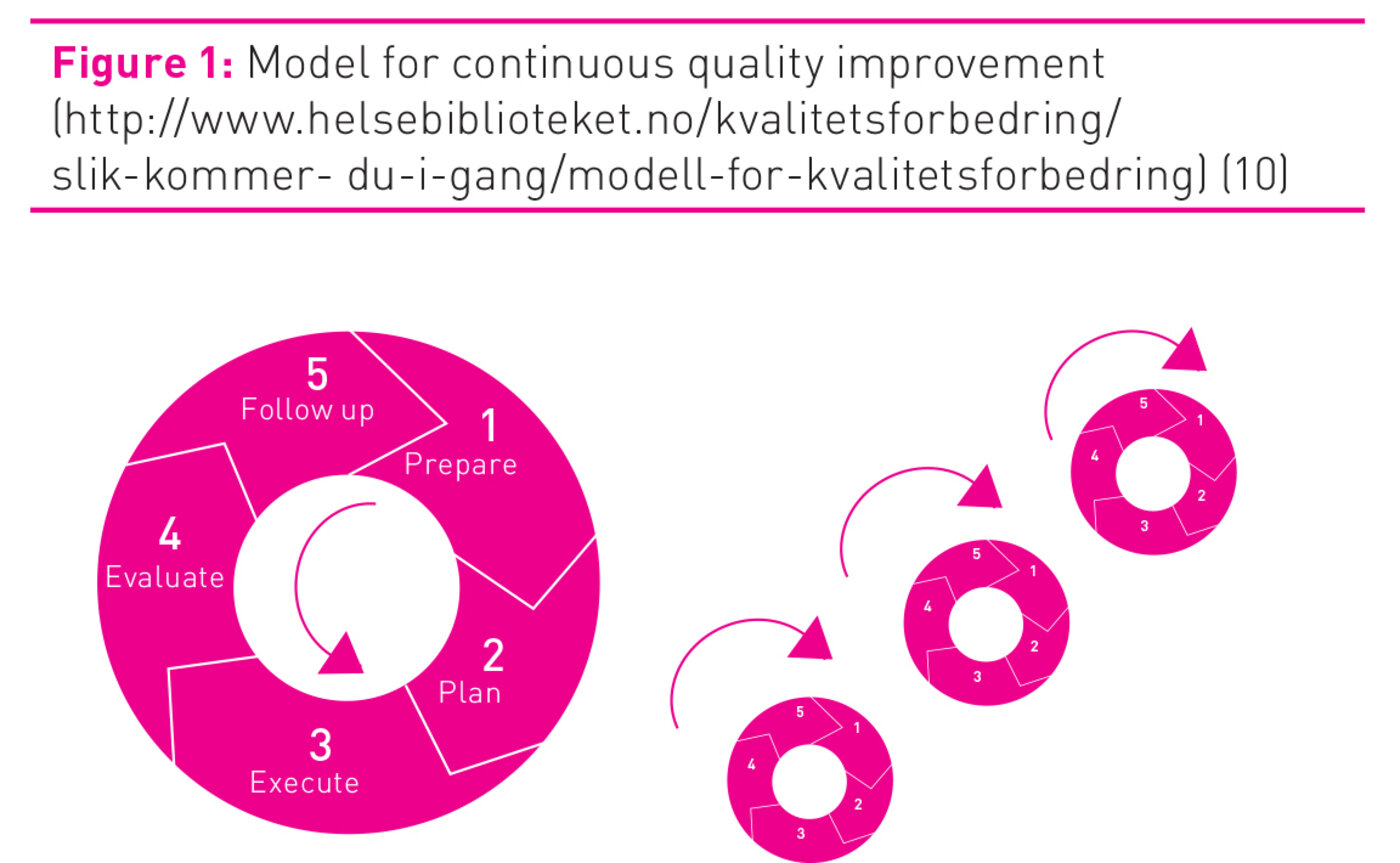 Figure 1: Model for continuous quality improvement