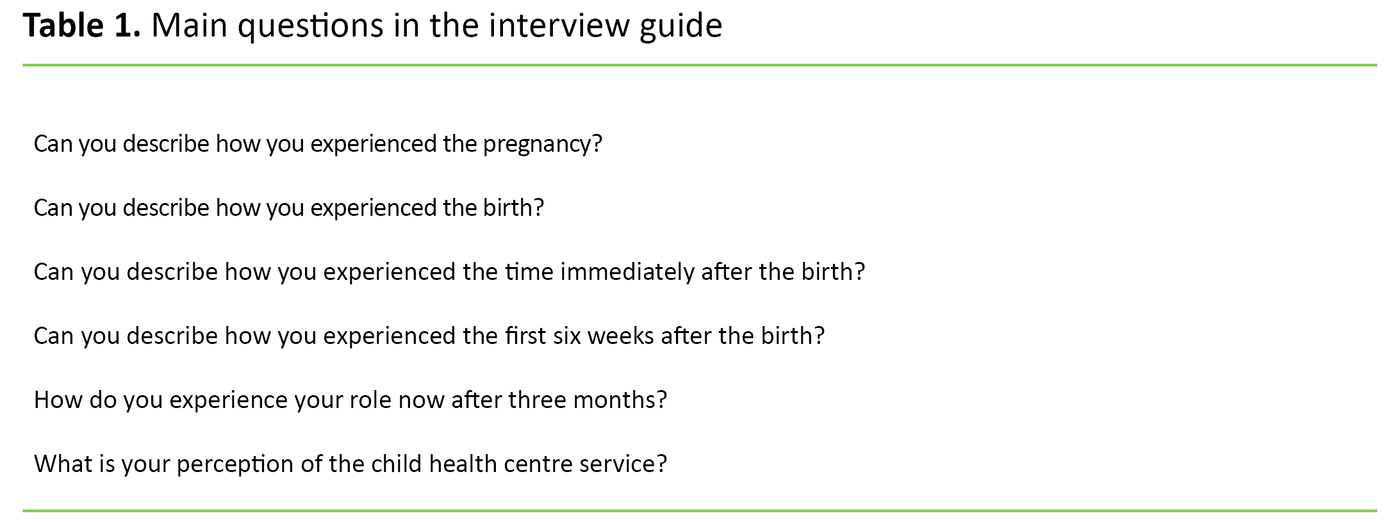 Table 1. Main questions in the interview guide