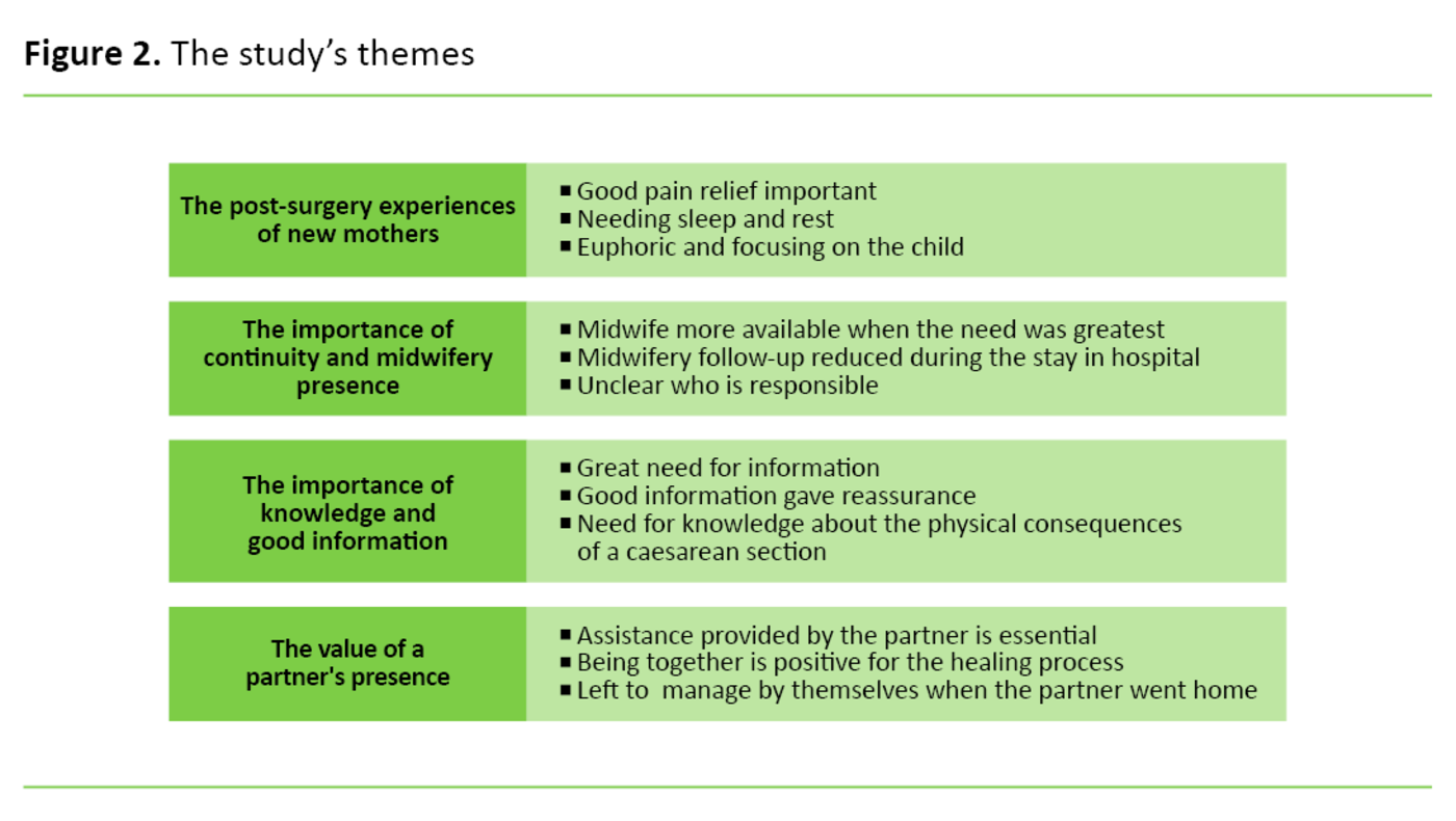 Figure 2. The study's themes